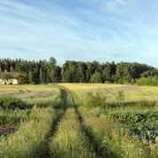 Distances d'épandage des pesticides : un nouveau recours devant le Conseil d'Etat déposé ce mardi
