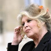 César : Brigitte Bardot vole au secours de Roman Polanski qui «sauve le cinéma de sa médiocrité»