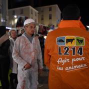 L'abattoir en Dordogne dénoncé par L214 suspendu après une enquête vétérinaire