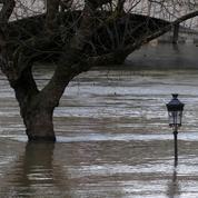 La Seine en crue, Paris prend des mesures