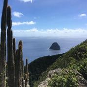 En Martinique, le confinement sous le soleil des Antilles