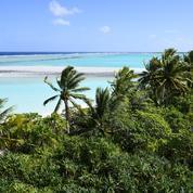 Îles désertes, bunkers, jets privés: comment les super riches réagissent-ils face au coronavirus?