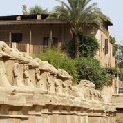 Au Caire, la colère gronde après l'installation de quatre sphinx antiques au milieu d'un rond-point
