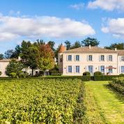 Échappées belles dans les vignes du Bordelais