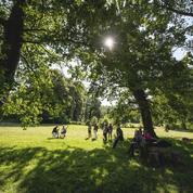 Le Festival des Forêts aura bien lieu, pour savourer la musique au creux des arbres