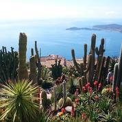 Cinq jardins exotiques pour prendre la poudre d'escampette