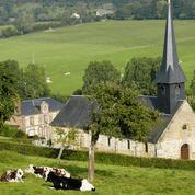 Sur les terres normandes du Pays d'Auge, balade au pays du camembert