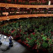 Barcelone : l'opéra rouvre ses portes avec plus de 2000 plantes comme spectateurs