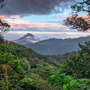 Cinq raisons de partir explorer le luxuriant Costa Rica (quand ce sera possible)