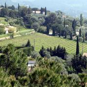 Œnotourisme : en Provence, dégustation vue mer dans les vignes de Bandol