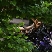 Accident mortel de manège: le président du parc mis en examen pour homicide involontaire