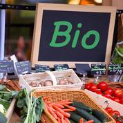 La grande distribution digère désormais plus de la moitié des ventes de produits bio