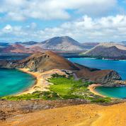 Les Galapagos rouvrent des sites et la réserve marine