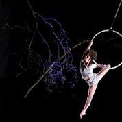 Le Cirque Plume annule sa tournée d'adieux: «L'épidémie nous condamne à finir dans la brume pandémique»