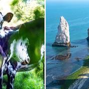 Du pays d'Auge au pays de Caux, dix idées originales pour (re)découvrir la Normandie