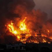 Grèce: incendie de pinèdes près de Corinthe dans le Péloponnèse