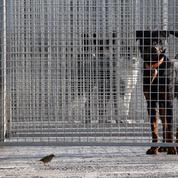 Fonds d'urgence pour les animaux des refuges: les associations relancent l'Etat appuyées de 85 personnalités