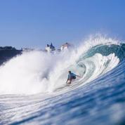 Joël de Rosnay : «Le surf est une école de management»