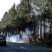 Incendie de forêt en Gironde: 250 hectares détruits