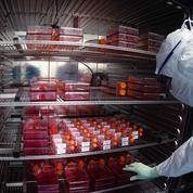 Covid-19: Sanofi fournira 300 millions de doses de vaccin à l'Union européenne