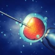 Tri d'embryons : le DPI-A, cette mesure controversée de la loi bioéthique