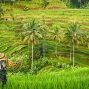 Covid-19 : L'Indonésie enregistre la première contraction de son PIB en 21 ans