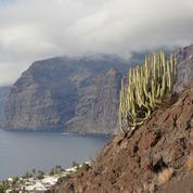 Tenerife, Gran Canaria, Lanzarote… Quelle île des Canaries choisir ? Notre guide de voyage