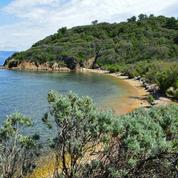 Randonnées, plages, fonds marins... Que faire à Port-Cros, éden naturel au large de Hyères