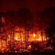 Les pompiers progressent face aux incendies en Californie