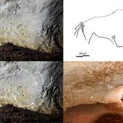 De nouveaux dessins préhistoriques découverts dans la grotte de Rouffignac durant le confinement