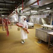 Plan de relance : 125 millions d'euros investis pour «moderniser» les abattoirs