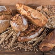 Les boulangeries Maison Kayser démentent leur départ de New York