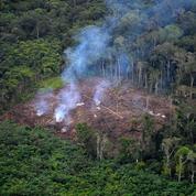 Accord UE-Mercosur : un coût environnemental trop élevé par rapport aux bénéfices économiques
