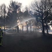 Un incendiaire multirécidiviste arrêté en Haute-Garonne