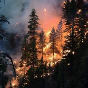 Incendies : la Californie ne s'en sort pas
