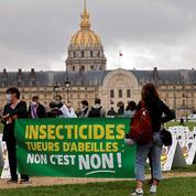 Projet de loi controversé sur les néonicotinoïdes : le débat en 7 questions