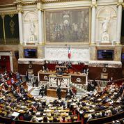 Biocarburants et huile de palme: les députés votent contre l'utilisation des résidus