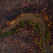 L'Amérique du Sud frappée par une sécheresse et des incendies sans précédent