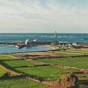 La Péninsule de la Hague, sauvage Cotentin du bout de la France