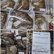 En vendant des animaux entiers en barquette, un magasin Leclerc suscite l'indignation