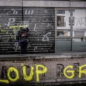 Qui sont les «Loups gris», les ultranationalistes turcs dans le viseur du gouvernement ?