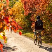 Il a fait 22,4 degrés mardi à Montréal : du jamais vu pour un mois de novembre