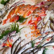 Des pêcheurs bretons veulent inciter les consommateurs à diversifier leurs choix en matière de poisson