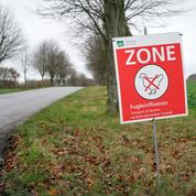 Grippe aviaire : un premier foyer détecté en Suède
