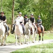 Dégourdir les chevaux, le casse-tête des centres équestres en période de confinement