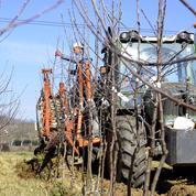 L'agriculture bretonne va devoir «produire moins», selon la chambre régionale d'agriculture