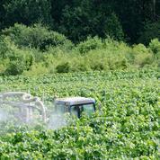Suspicion de produits dangereux non déclarés dans des pesticides : des associations portent plainte