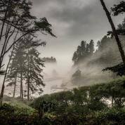 Un tiers des sites naturels du Patrimoine mondial menacés par le changement climatique