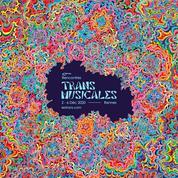 Pour leur édition 2020, les Trans Musicales «s'invitent chez vous »