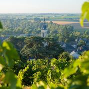 Près d'Angers, sept activités ludiques pour découvrir le vin d'Anjou